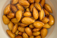 Closeup of almonds soaked in water Royalty Free Stock Images