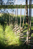 Closeup of ancient wooden fence. Through grass Royalty Free Stock Images