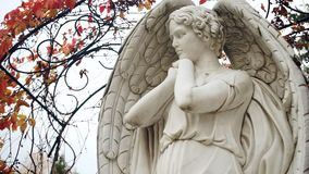 Closeup of angel statue. Static camera stock footage
