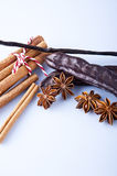 Closeup of anise, cinnamon and vanilla pods Stock Images
