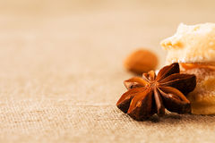 Closeup of a aniseed on fabric Royalty Free Stock Photos