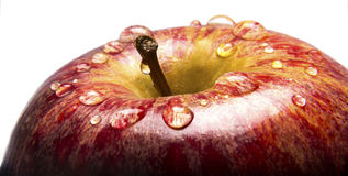 Closeup of Apple with Water Droplests Royalty Free Stock Photography