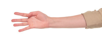 Closeup of arm - hand making number four sign. Closeup isolated studio shot of the front view of a womans outstretched hand in a number four sign Stock Photos
