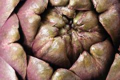 Closeup of an artichoke Royalty Free Stock Photo