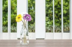 Closeup artificial colorful flower on transparent glass bottle on wood chair in the garden view background royalty free stock image