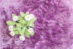 Closeup artificial plant with white flower on purple pot on purple carpet textured background in top view. Closeup artificial plant with white flower on purple Stock Photo