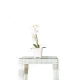 Closeup artificial plant with white orchid flower on pink flower pot on wood weave table isolated on white background , beautiful Stock Images