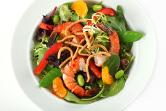 Closeup of Asian Shrimp Salad Plate Royalty Free Stock Photo