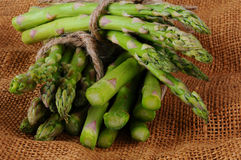 Closeup of Asparagus Stock Image