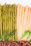 Closeup of asparagus salad with anchovies. Royalty Free Stock Image