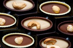 Closeup of assorted chocolates with peanut, cashew, hazelnut and almond nuts stock image
