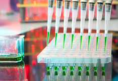 Loaded multipipette over a plate for DNA analysis Stock Images