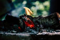 Closeup av brinnande journaler inomhus royaltyfria foton