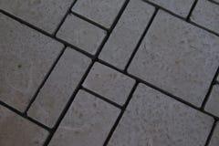 Closeup av cement som stenlägger textur på trädgård royaltyfri foto
