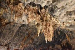 Closeup av de berömda Cango grottorna i Oudtshoorn, liten Karoo i Sydafrika royaltyfri bild