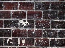 Closeup av den gamla tegelstenväggen för mörk brunt Royaltyfria Bilder