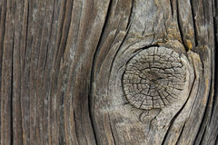 Closeup av den gamla träfnuren Fotografering för Bildbyråer