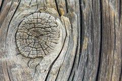 Closeup av den gamla träfnuren Arkivfoto