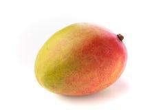 Closeup av den hela isolerade mango Fotografering för Bildbyråer