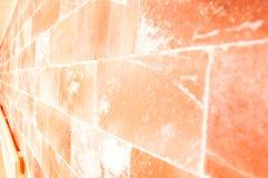Closeup av den himalayan salta väggen i basturum fotografering för bildbyråer
