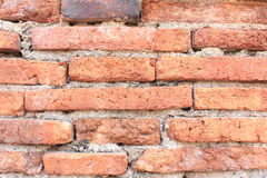 Closeup av den klara tegelstenväggen Arkivfoton