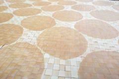 Closeup av den rå smällaren för soluttorkning i Thailand Royaltyfria Foton