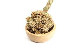Closeup av den torra spetsiga bollblomman för brunt på den bruna träkoppen Royaltyfri Foto