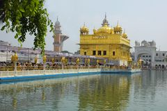Closeup av det guld- tempelet Amritsar Punjab Indien royaltyfri fotografi