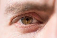Closeup av det mänskliga ögat Arkivbild