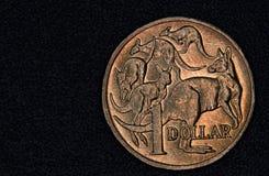 Closeup av en australier 1 dollar mynt Royaltyfri Fotografi