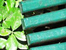 Closeup av en bänk Royaltyfri Foto