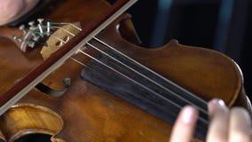 Closeup av en fiol som fingrar raderna och pilbågen Svart bakgrund arkivfilmer