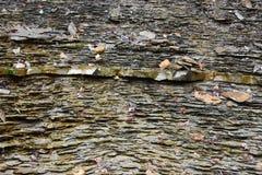 Closeup av en grå stenvägg fotografering för bildbyråer