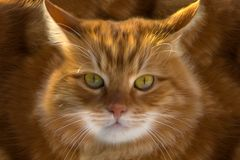 Closeup av en ljust rödbrun katt vektor illustrationer