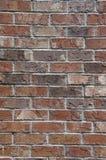Closeup av en tegelstenvägg Arkivbilder