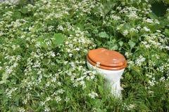 Closeup av en wcbunke mellan lösa växter och blommor royaltyfri fotografi