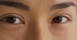Closeup av enkel japanska kvinnas öga Arkivbild