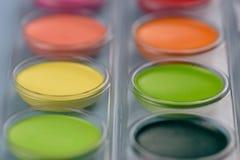 Closeup av färgade målarfärger för jord signal Royaltyfri Fotografi