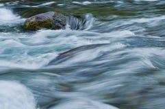 Closeup av flödande vatten med färger för havsgräsplan och blått arkivbild