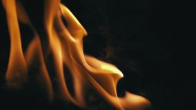 Closeup av flammor som bränner på svart bakgrund stock video