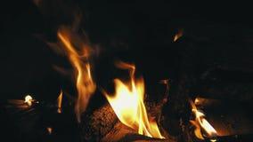 Closeup av flammor som bränner på svart bakgrund arkivfilmer