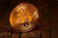 Closeup av fysisk bitcoin över arrangera i rak linje datorCPU-processorer Royaltyfri Fotografi