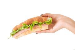 Closeup av grönsallat och skinksmörgåsen för hand hållande Royaltyfri Bild