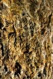 Closeup av grov mineralisk yttersida Arkivbilder
