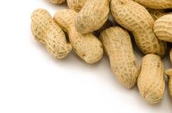 Closeup av jordnötter Arkivbild