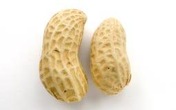 Closeup av jordnötter Fotografering för Bildbyråer