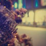 Closeup av julgranen Arkivfoto