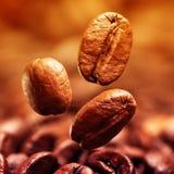 Closeup av kaffebönor fotografering för bildbyråer