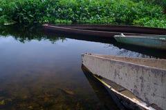 Closeup av kanoter på bankerna av den Panguila lagun arkivfoto
