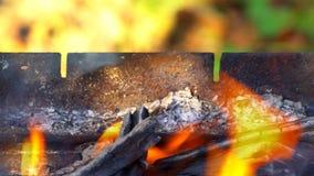 Closeup av kolbränningen under ett grillfestgaller stock video